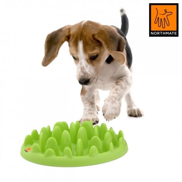 Interactive Food Puzzles For Dogs