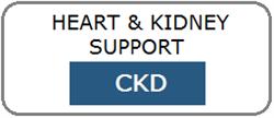 CKD Nyre