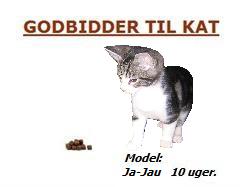 • Kat